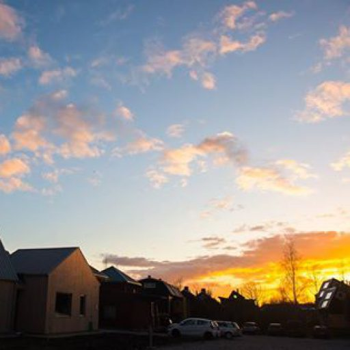 Vimby i solopgang